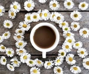 coffee, daisy, and daisies image