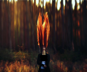 hair, girl, and forest image