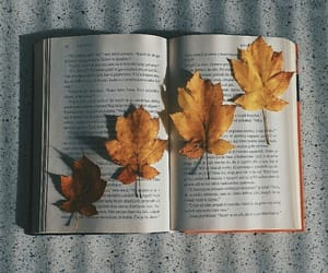 books, colors, and falltime image