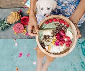 food, dog, and fruit image