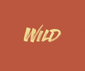 headers, orange, and wild image