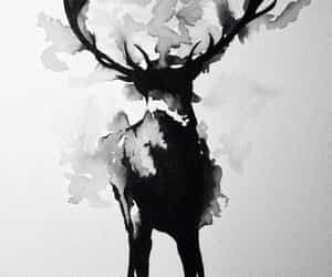 art, deer, and animal image