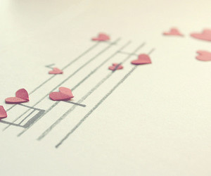 amor, music, and musica image