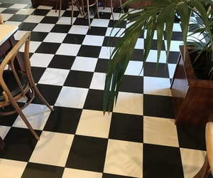 theme, checkered, and plants image