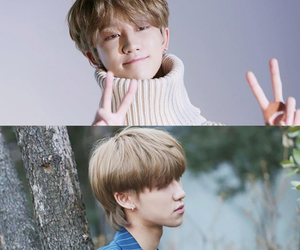 kpop, Seventeen, and carat image