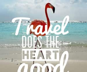 heart, travel, and traveling image