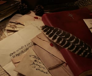 bookish, calligraphy, and feather image