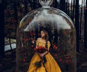 yellow, rose, and fantasy image