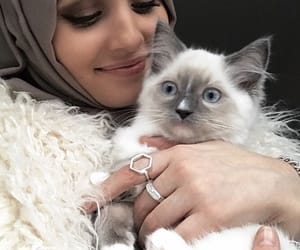 hijab and müslimah image