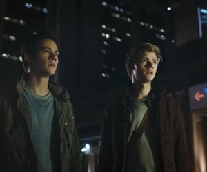 thomas, the maze runner, and the death cure image