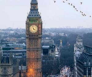 Big Ben, birds, and Doves image