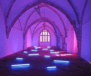 neon and purple image