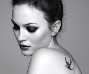 leighton meesters image