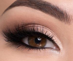 eye, eyebrow, and eyelashes image
