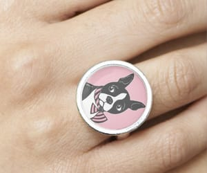 accessories, boston terrier, and ring image