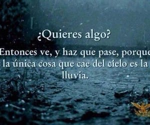 frases, lluvia, and rain image