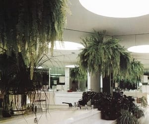 green, interior, and tropical image