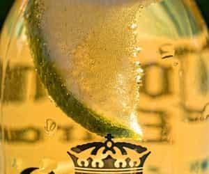 beer, corona, and photography image