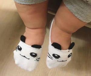 baby, panda, and socks image