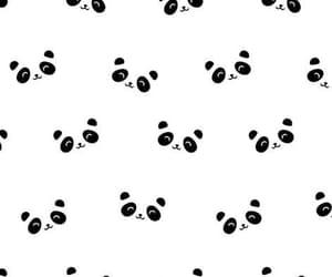 pandas, patron, and fondos image