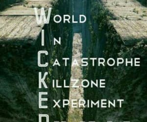wicked and maze runner image
