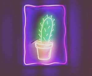 neon, cactus, and light image