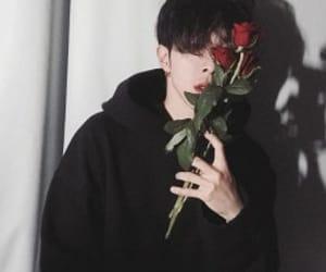 boy, rose, and ulzzang image