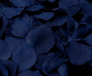 blue, dark, and aesthetic image