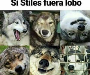 memes, teen wolf, and stiles stilinski image
