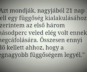 hungarian, hungary, and quotes image