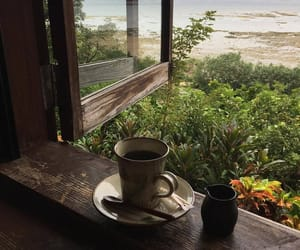 coffee, nature, and aesthetic image