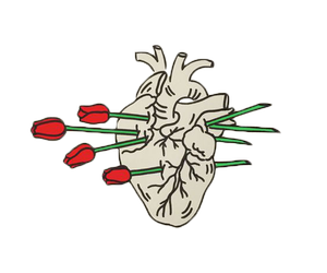 png and heart image