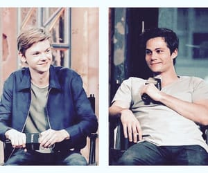the maze runner, thomas brodie sangster, and dylmas image