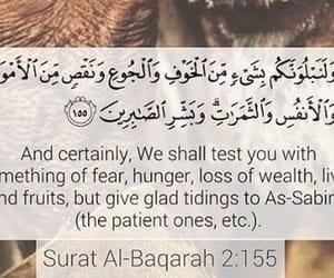 quran, verse, and surah baqarah image