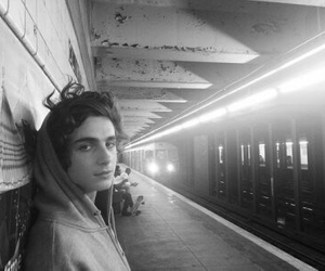 boy, b&w, and timothee chalamet image