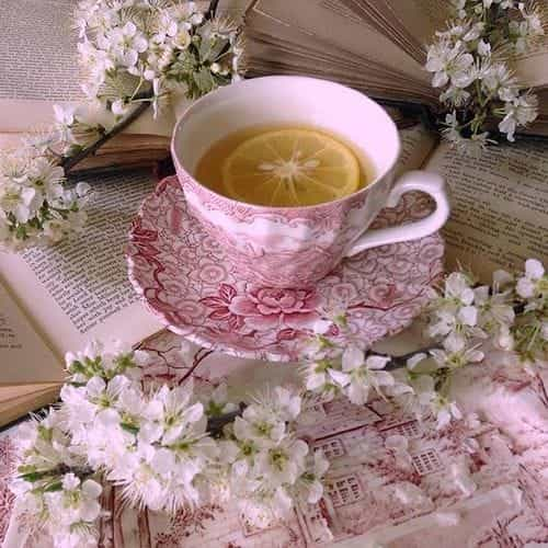 pink, tea, and shabby chic image