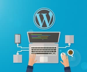 wordpress development, wordpress plugins, and hire wordpress developer image