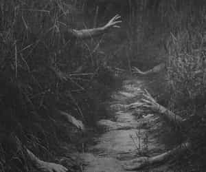 hands, black and white, and horror image