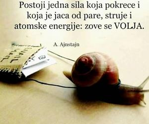 volja, motivacija, and citati image