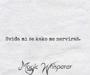 magic whisperer and citati image