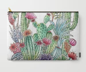 cacti, cactus, and carry image