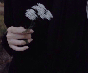 black, flowers, and aesthetic image