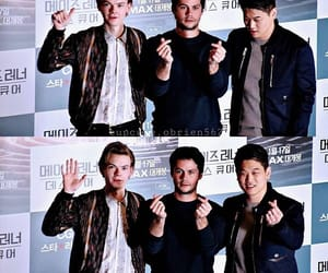 movie, newt, and thedeathcure image