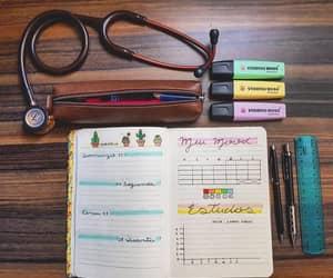 cactus, medicine, and nurse image