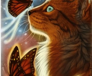 butterfly, cat, and art image