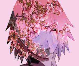 anime, cherry blossoms, and manga image