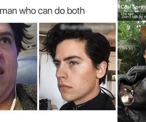 cole sprouse, riverdale, and memes image