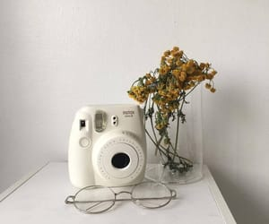 aesthetic, white, and flowers image
