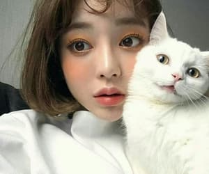 cat, girl, and ulzzang image