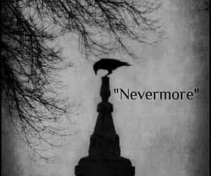 edgar allan poe, gothic, and nevermore image